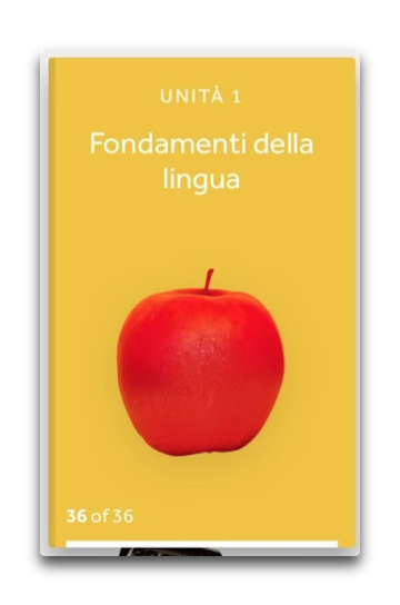 rosetta_stone_interfaccia